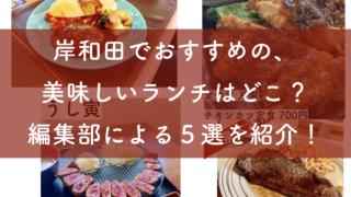 岸和田でおすすめの美味しいランチを5つ紹介